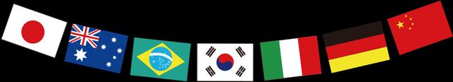 flag_r